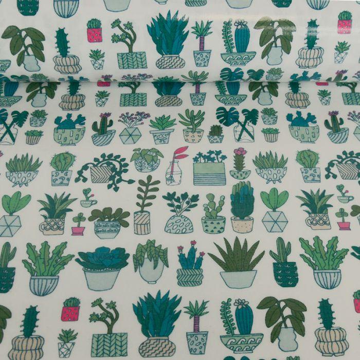 Toile cirée Rico design cactus x 10 cm