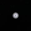 Perle nacrée ronde 10mm blanc x1