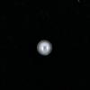 Perle nacrée ronde 8mm gris perle x10