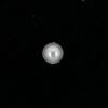 Perle nacrée ronde 8mm blanc x10