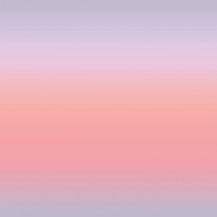 Tissu popeline coton dégradé rose - Rico Design x 10 cm