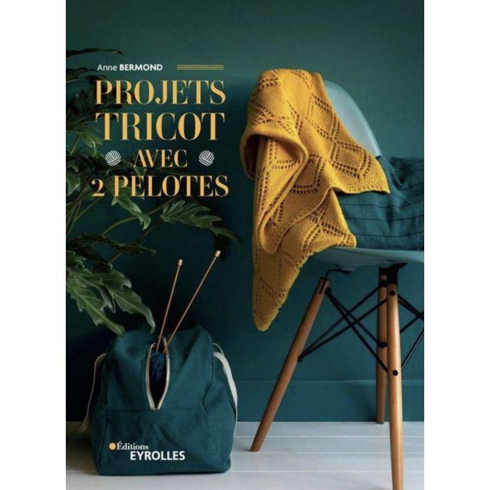 Projets Tricot avec 2 pelotes - Anne Bermond