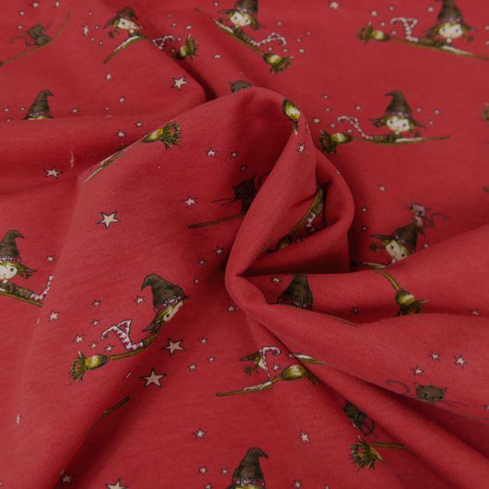 Tissu Jersey Gratté Sorcière - Framboise x 10 cm