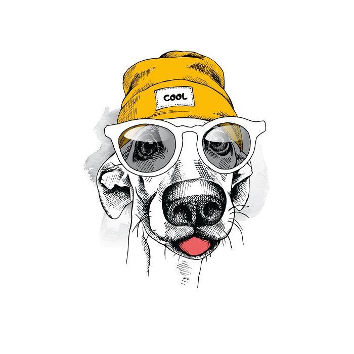 Transfert textile chien bonnet jaune
