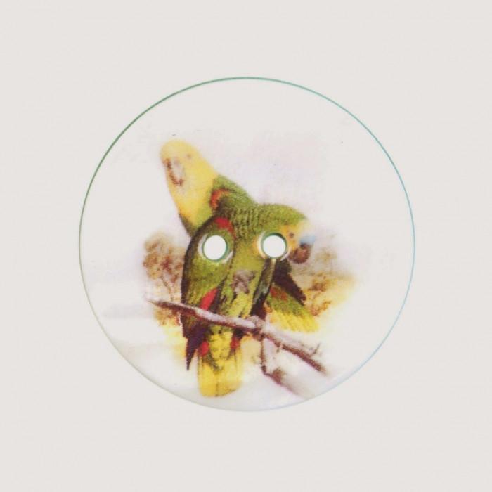Bouton de nacre imprimé perruche